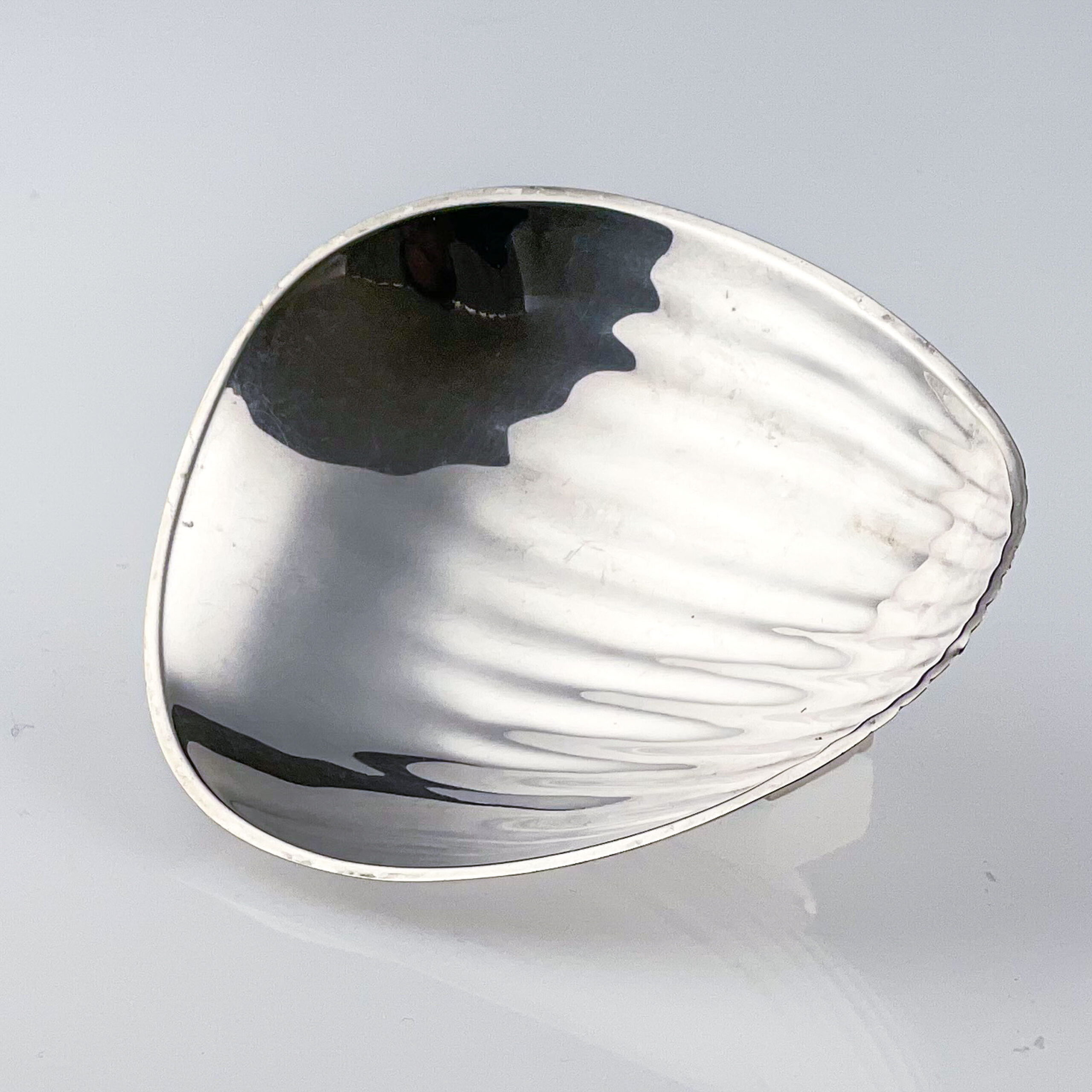 TW twee zilveren schaaltjes web-1317